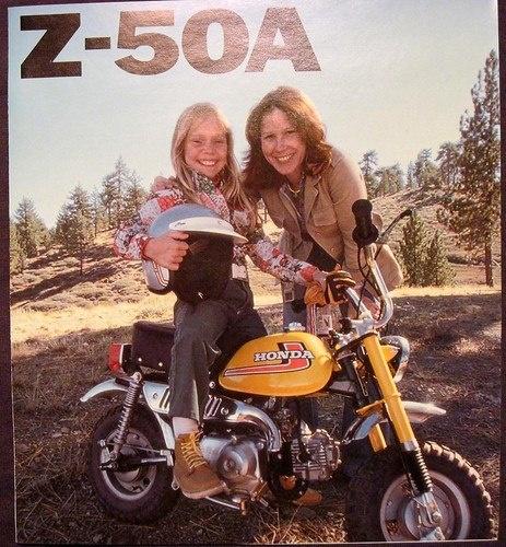 z50-ad